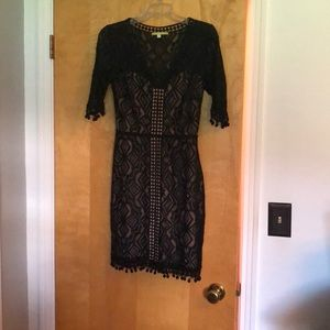 Black and Tan detailed lace dress.